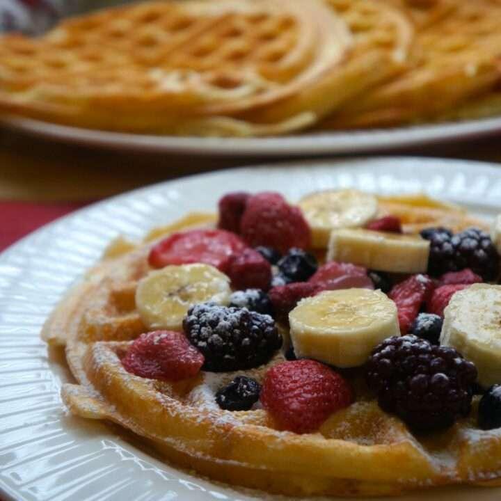 Tapioca Flour Waffles