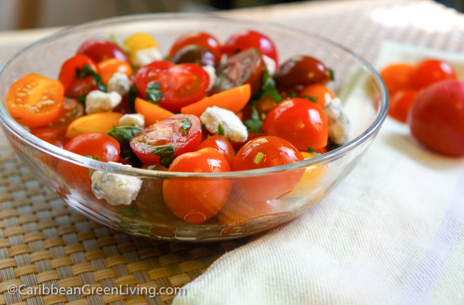 Tomatoes and Feta Cheese Salad