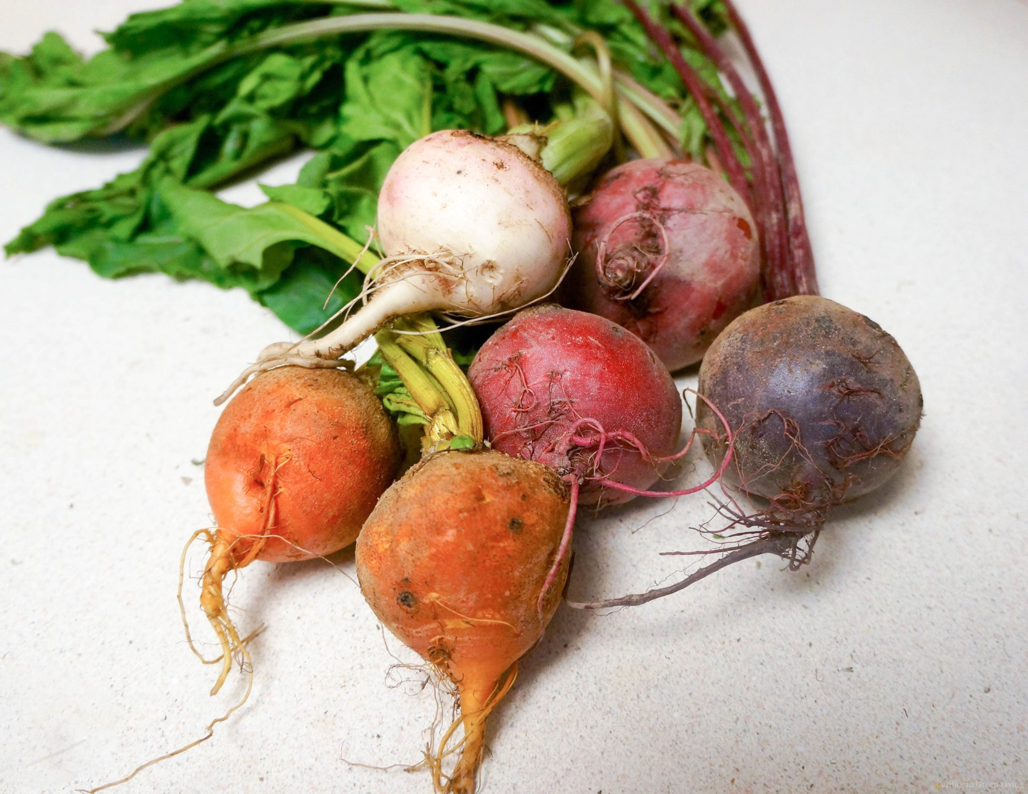 Did you know this about beetroots?