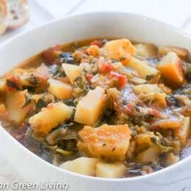 Papaya Eggplant and Watercress Stew 1 3