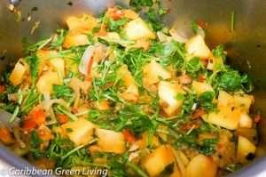 Uncooked Veggies 2