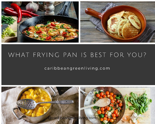 What Frying Pan is Best for You?