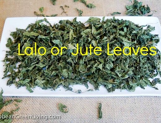 7 Reasons Jute Lalo Leaves Deserve Far More