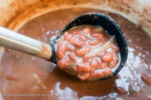 Red Kidney Beans Consomme
