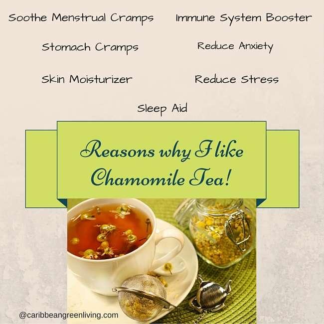 reasons why I like Chamomile Tea (1)