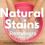 The best all Natural Stains Removers