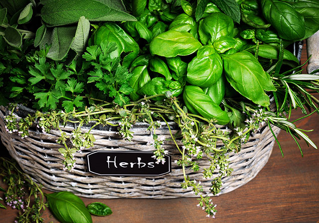 Basket with herbs-caribbeangreenliving.com