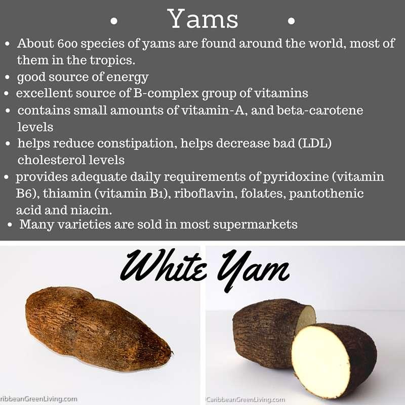 White Yam - caribbeangreenliving.com