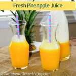 Fresh Pineapple Juice - caribbeangreenliving.com