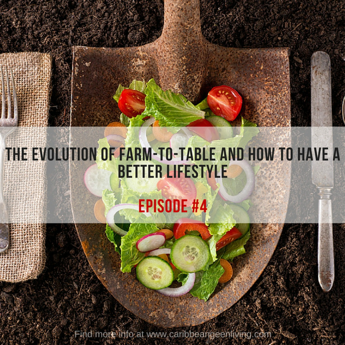 The evolution of Farm-to-table and how to have a better lifestyle - caribbeangreenliving.com