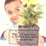 Why it is important to involve kids in gardening - caribbeangreenliving.com