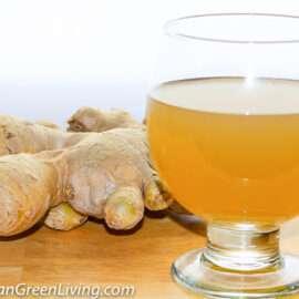 Ginger Nectar 3 2