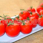 Important reasons why you should consume tomatoes daily
