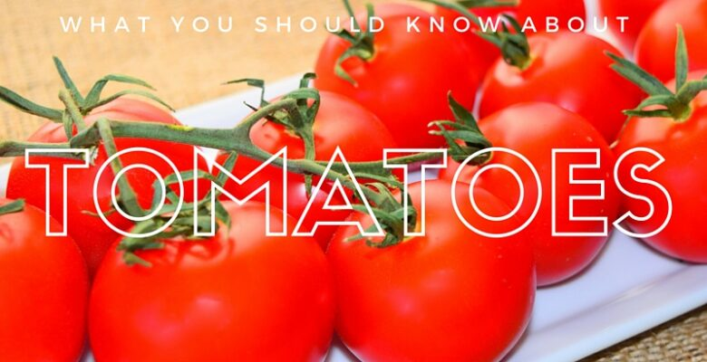 Important reasons why you should eat tomatoes daily