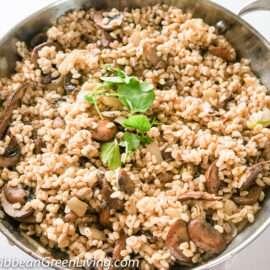 Warm Barley and Mushroom Salad 5 1
