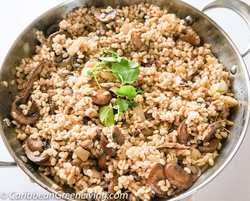 Warm Barley and Mushroom Salad