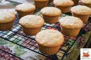 Coconut Cupcakes 2 1