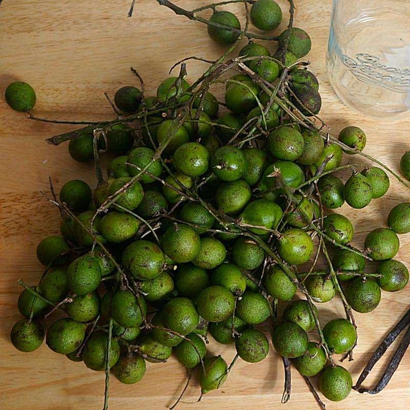Kenep fruit