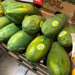 What you need to know about Papaya