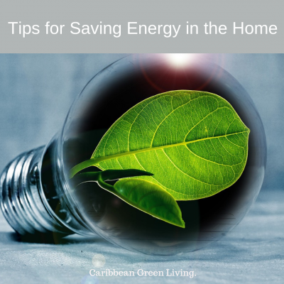 Tips for Saving Energy in the Home
