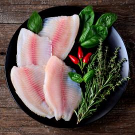 Fish Stock png