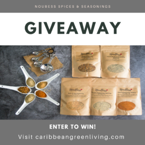 Get Cooking with Noubess Seasonings & Spices - Giveaway